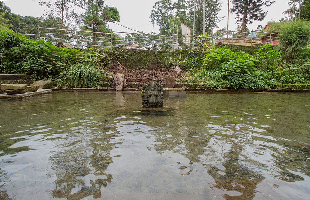 Semi-submerged carving of Surya
