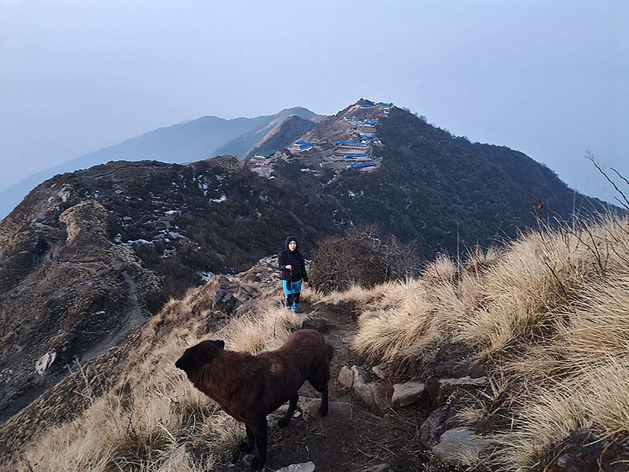 trekking-to-mardi-himal-view.jpg